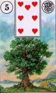Lenormand Tree Card Combinations