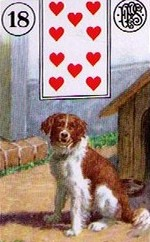 Lenormand Dog Card Combinations