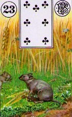 Lenormand Mice Card Combinations