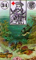 Lenormand Fish Card Combinations